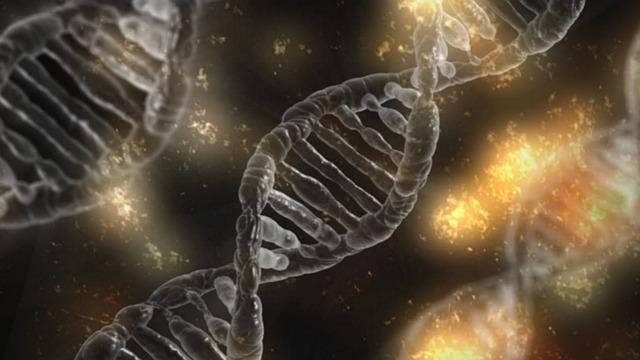 מחלות גנטיות