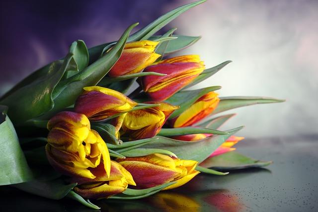 משלוחי פרחים - הדרך המושלמת להפתיע